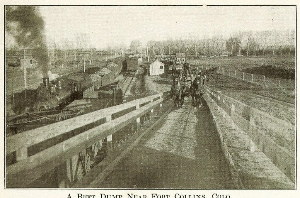 Historic Fort Collins Postcards – Second Set